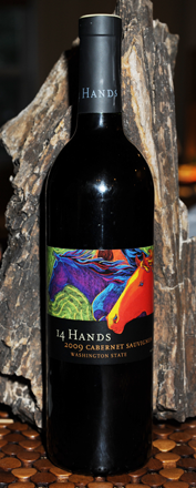 14 Hands Cabernet Sauvignon against some cool petrified wood
